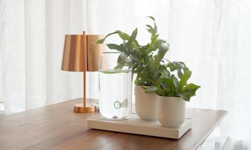 Tableau: A stand-alone water system that will water your indoor plants