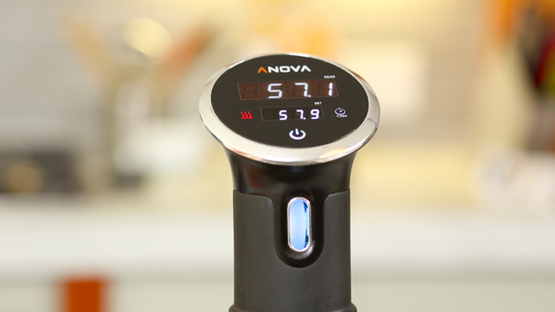 Anova Precision Cooker Review - A User-Friendly Precision Cooker to Help Bring Delectable Dishes