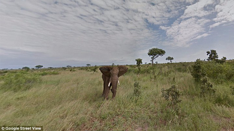 Google Street View - See South Africa at the Comforts of Your Own Home
