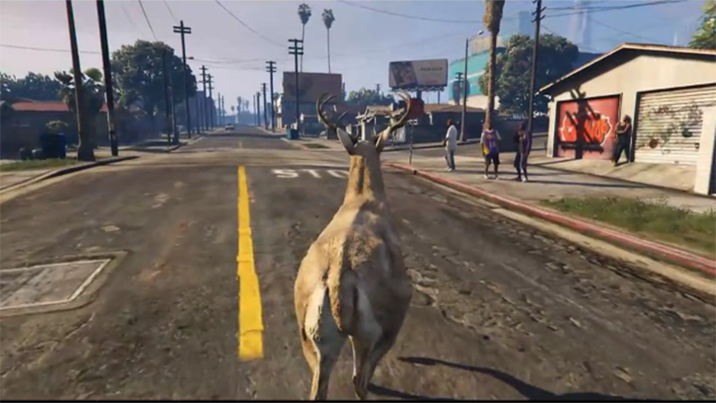 Grand Theft Auto V - Deer Cam on Twitch Captures Much Attention
