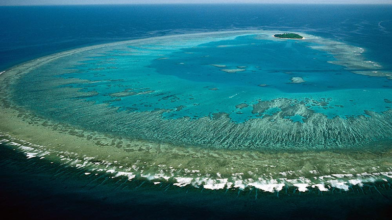 Great Barrier Reef - Coral Bleaching Found to be Worst in its History