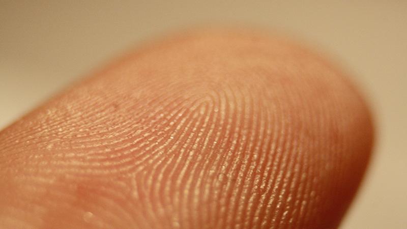Microsoft - Windows Mobile Phones Now Getting the Fingerprint Scanning Treatment