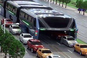 Road-straddling-bus-1-630x420
