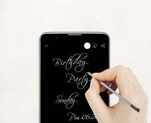 LG Stylus in Action