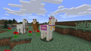 Minecraft Llamas